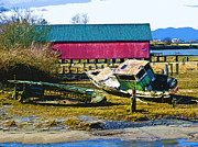 Shed Digital Art - Samish Island Abandoned boat by John Parks