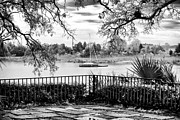 River View Photo Metal Prints - Sampit River View Metal Print by John Rizzuto