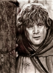 Lord Drawings Metal Prints - Samwise Gamgee Metal Print by Maren Jeskanen