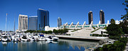 San Diego Panoramic View Print by Bedros Awak