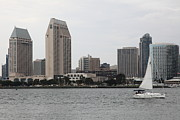 Petco Prints - San Diego Skyline 5D24333 Print by Wingsdomain Art and Photography