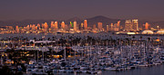 Pinnacle Framed Prints - San Diego Skyline Framed Print by Alexis Birkill