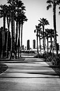 High Rises Posters - San Diego Skyline from Coronado Island in Black and White Poster by Paul Velgos