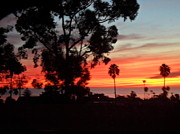 Val Oconnor - San Diego Sunset 5