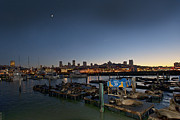 Artist and Photographer Laura Wrede - San Francisco at Night Pier 39