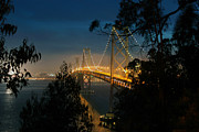 San Francisco Cali Posters - San Francisco Bay Bridge Poster by Jaime Pettry