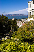 Sausalito Art - San Francisco Bay by Mark Llewellyn