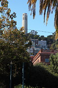 Coit Tower Posters - San Francisco Coit Tower 5D25941 Poster by Wingsdomain Art and Photography