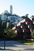 Levi Metal Prints - San Francisco Coit Tower At Levis Plaza 5D26188 Metal Print by Wingsdomain Art and Photography