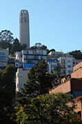 Plazas Posters - San Francisco Coit Tower At Levis Plaza 5D26192 Poster by Wingsdomain Art and Photography