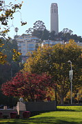 Plazas Posters - San Francisco Coit Tower At Levis Plaza 5D26216 Poster by Wingsdomain Art and Photography