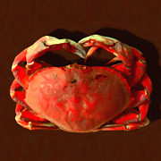 Boiled Prints - San Francisco Dungeness Crab - Painterly - Square Print by Wingsdomain Art and Photography