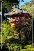 Robert Plant Print Posters - San Francisco Golden Gate Park Japanese Tea Garden 10 Poster by Robert Santuci