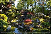 Robert Plant Print Art - San Francisco Golden Gate Park Japanese Tea Garden 2 by Robert Santuci