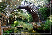 Robert Plant Print Art - San Francisco Golden Gate Park Japanese Tea Garden 4 by Robert Santuci