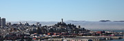 Coit Tower Framed Prints - San Francisco Panorama 5D25373 Framed Print by Wingsdomain Art and Photography