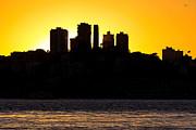 Kate Brown - San Francisco Silhouette