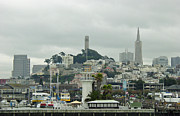 Coit Tower Framed Prints - San Francisco View from Fishermans Wharf Framed Print by Suzanne Gaff