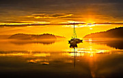 Yellow Sailboats Posters - San Juan Sunrise Poster by Robert Bales