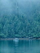 Calm Waters Prints - Sanctuary Fjord Print by Rob Wilson