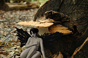 Fungus Prints - Sanctuary Print by Mark Zelmer