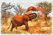 Elephant Framed Prints - Sand Bath Framed Print by Ayse Toyran