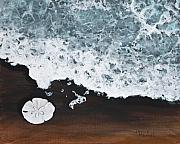 Sea Shell Paintings - Sand Dollar by Darice Machel McGuire
