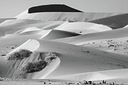 West Africa Prints - Sand Dune Sculptures - Namibia Print by Aidan Moran