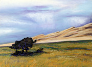 Colorado Paintings - Sand Dunes by Abbie Groves