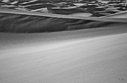Greyscale Prints - Sand Dunes Abstract Print by Aaron Spong