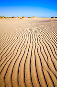 Holiday Destination Prints - Sand Dunes at Eucla Print by Colin and Linda McKie