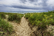 Stormy Weather Posters - Sand Dunes Beach Path Poster by Sebastian Musial