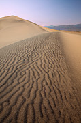 Patrick Downey - Sand Dunes - Death Valley