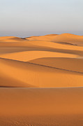 Sand Dunes In The Sahara Desert Print by Robert Preston
