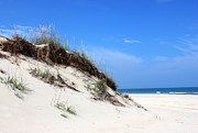 Currituck Art - Sand Dunes of Corolla Outer Banks OBX by Design Turnpike