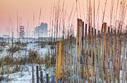 Beach Fence Digital Art Posters - Sand Fence and Orange Beach Poster by Michael Thomas
