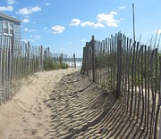 Cloud Prints - Sand fence at Southern Shores  Print by Cathy Lindsey