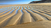 Dapixara Art - Sand Ripples At Low Tide