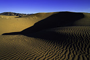 Desert Metal Prints - Sand Ripples Metal Print by Chad Dutson