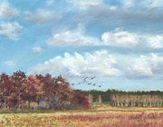 Autumn Pastels Prints - Sandhill Cranes at Crex with Birch  Print by Jymme Golden