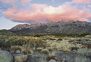 Southwestern Print Framed Prints - Sandia Sunset Mountain Framed Print by Andrea Hazel Ihlefeld