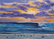 Sandpiper Painting Framed Prints - Sandpiper Sunset Framed Print by Anne Marie Brown