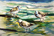 Julianne Felton - Sandpipers 3