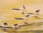 Julianne Felton - Sandpipers 5