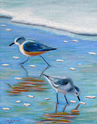 Shorebird Paintings - Sandpipers at the beach by Jennifer Richards