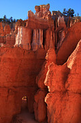 Utah National Parks Prints - Sandstone Doorway - Bryce Canyon - Utah Print by Aidan Moran