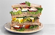Sandwiches Print by Science Photo Library