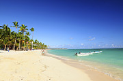 Palms Photos - Sandy beach on Caribbean resort  by Elena Elisseeva