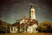 Shipping Posters - Sandy Hook Lighthouse Poster by Joan Carroll