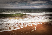 Horizon Metal Prints - Sandy ocean beach Metal Print by Elena Elisseeva